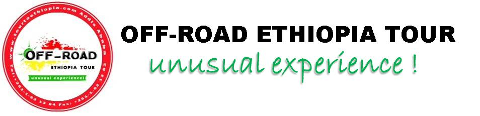 Import Tax to Ethiopia | Ethiopian Business Listing