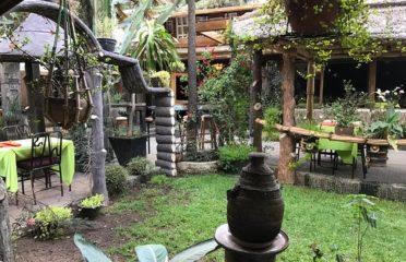Lucy Ethiopian Restaurant & Lounge