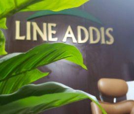 Line Addis Consultancy
